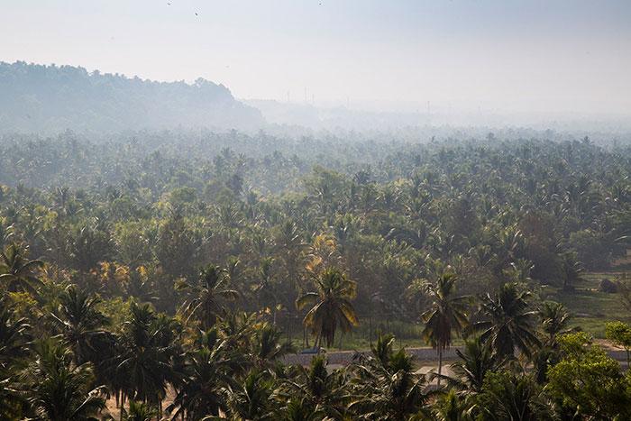 Somatheeram Kerala