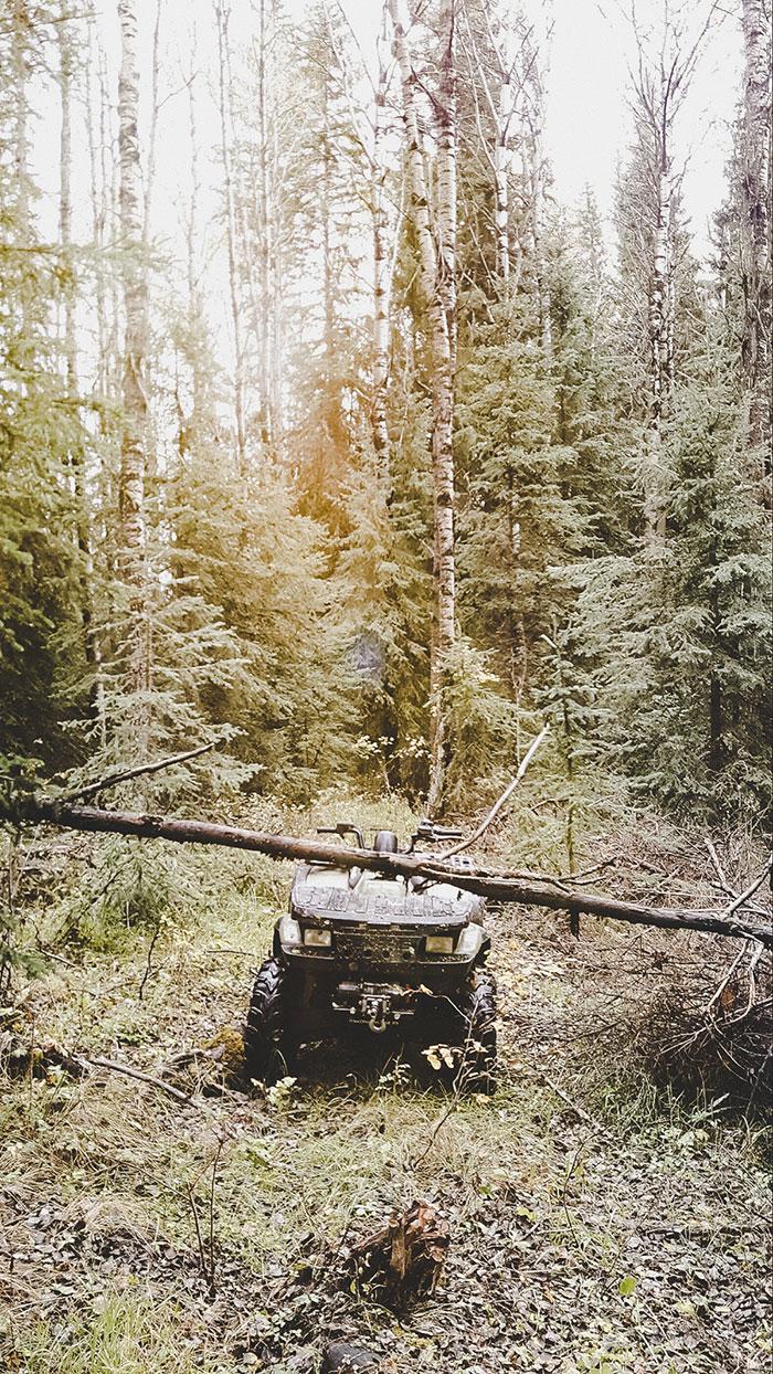 Traktor Wald Kanada