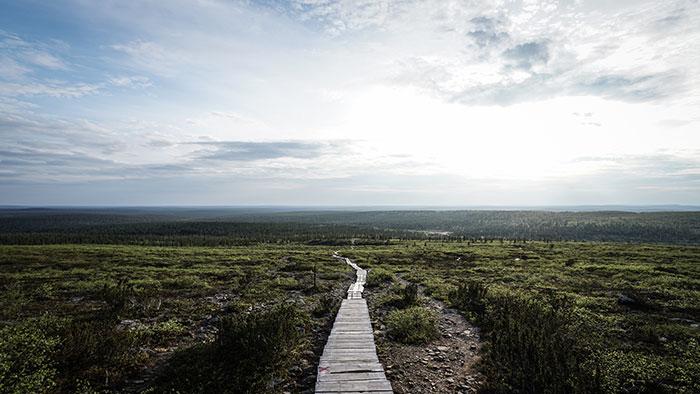 UrhoKekkonen Nationalpark Ausblick