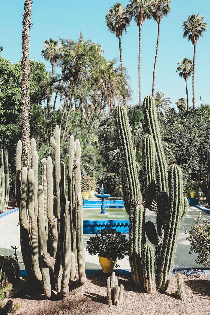 YSL Jardin Majourelle
