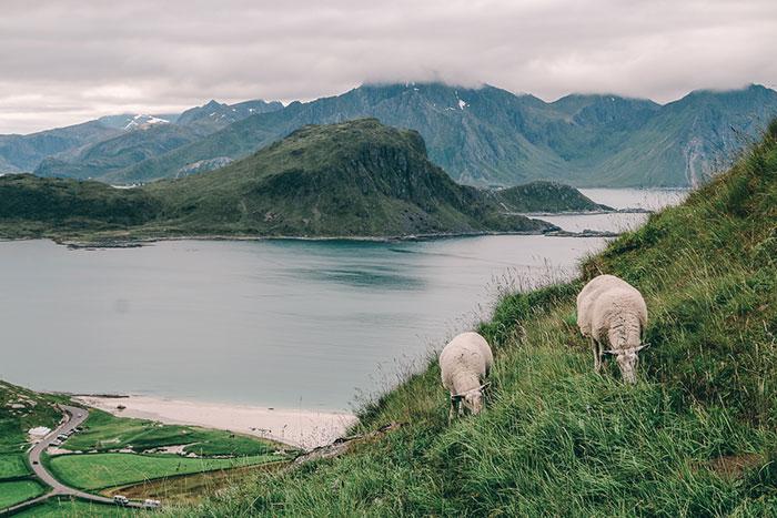Berg Mannen Norwegen
