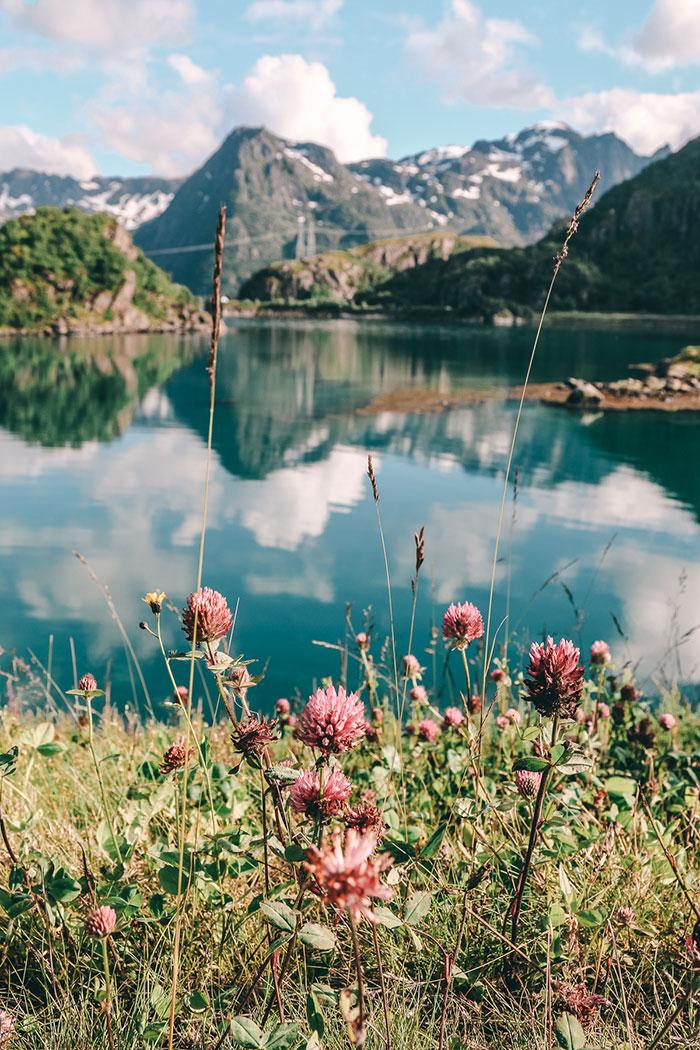 Natur Norwegen Lofoten