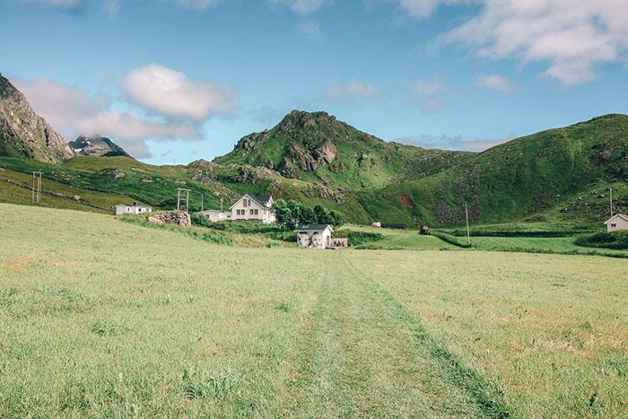 Wiese Norwegen Lofoten