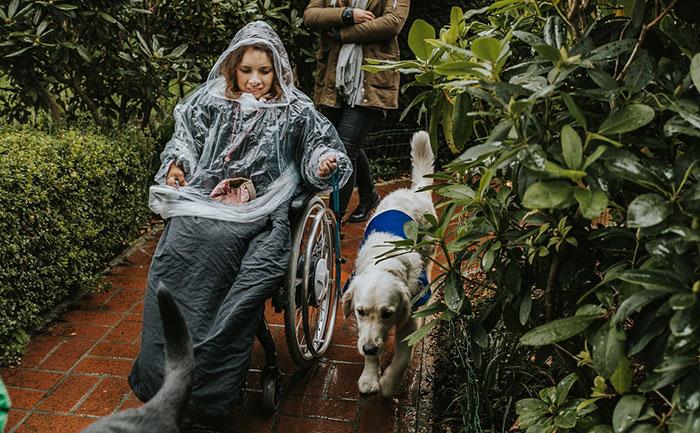 Assistenzhund Rollstuhl
