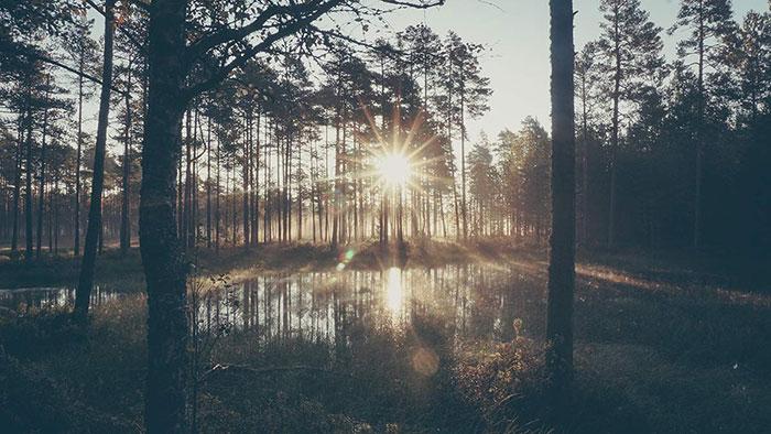 Sonne Sonnenaufgang Viru