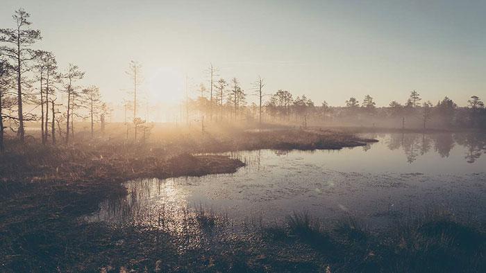 Viru See Sonnenaufgang