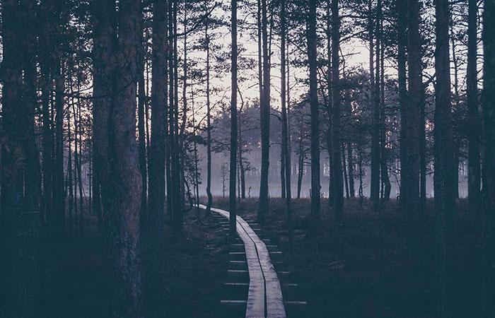 Viru Sonnenaufgang Wanderweg