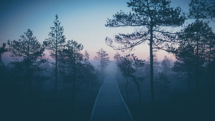 Viru Sonnenaufgang Weg