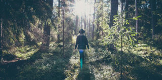 Estland Reisetipps – die schönsten Naturerlebnisse zum Entspannen