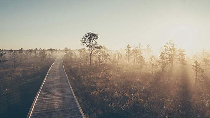 Weg Sonnenaufgang