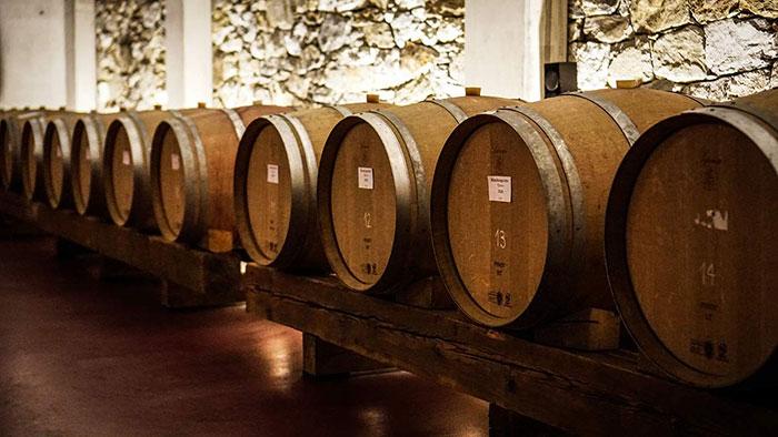 Weinverkostung in der Kellerei