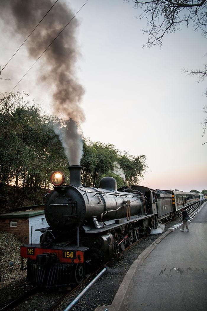 Zeitreise mit dem Royal Livingston Express