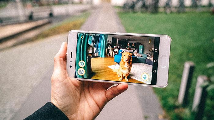 Hundekamera ueber App steuern