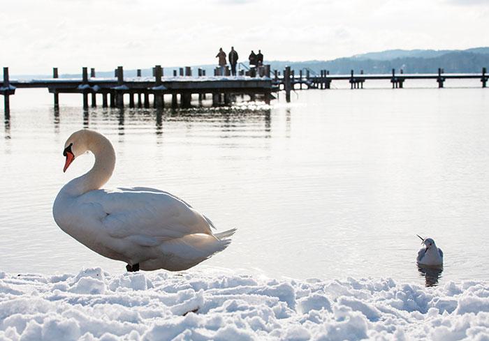 Hotel Vier Jahreszeiten Starnberg See