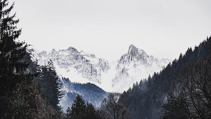 Latemar Wald Obereggen