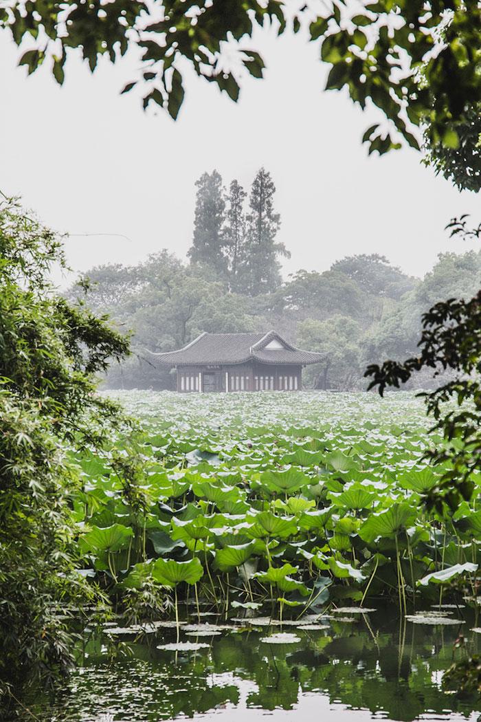 Lotus Westsee Hangzhou