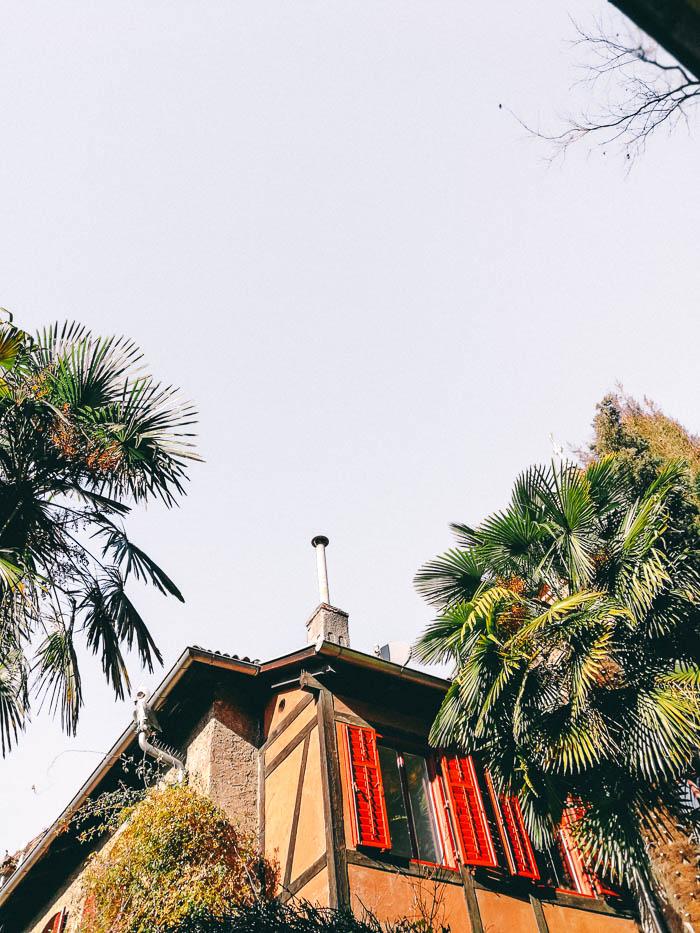 palmen meran