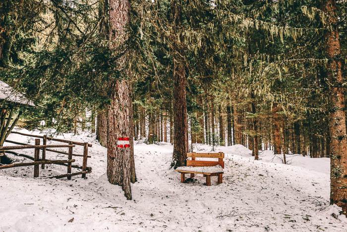schneeschuhwanderung altenmarkt-zauchensee