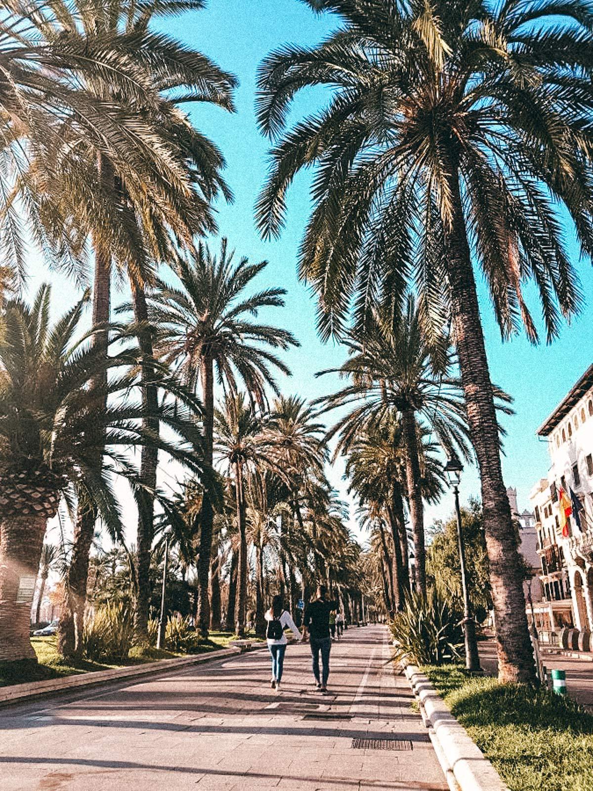 spaziergang durch palma mallorca