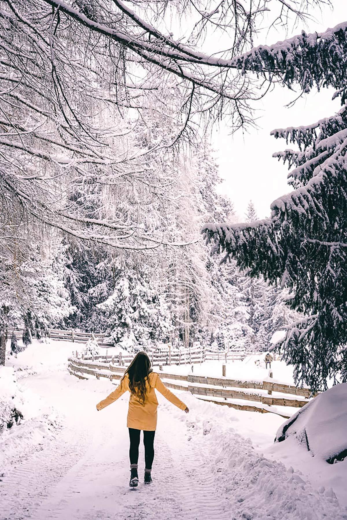 Südtiroler Winter Christine Neder