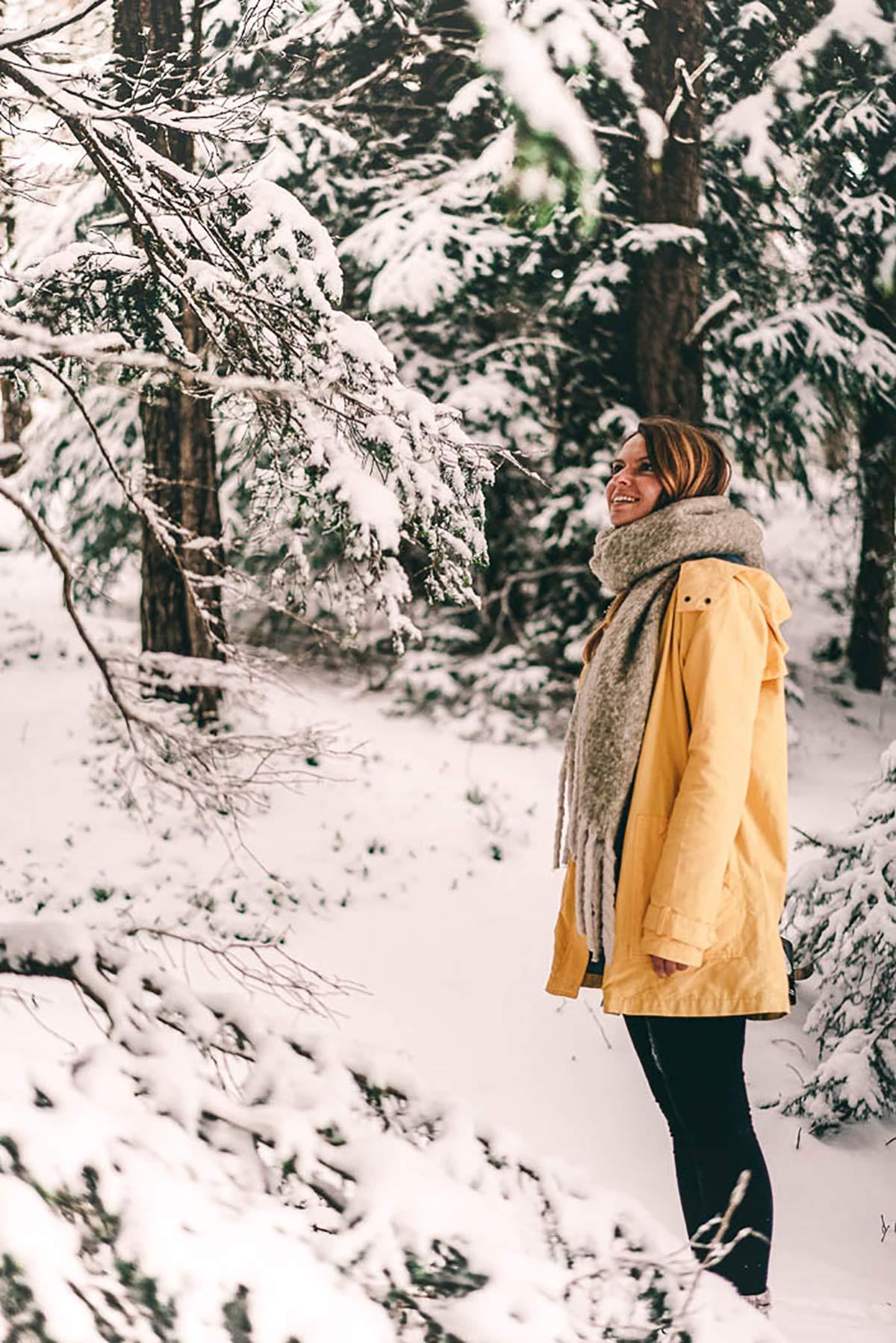 Wald Winter Christine Neder