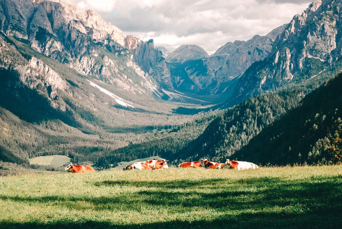 Wanderung St Vigli Südtirol