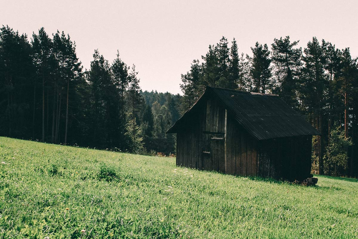 Wiese Südtirol