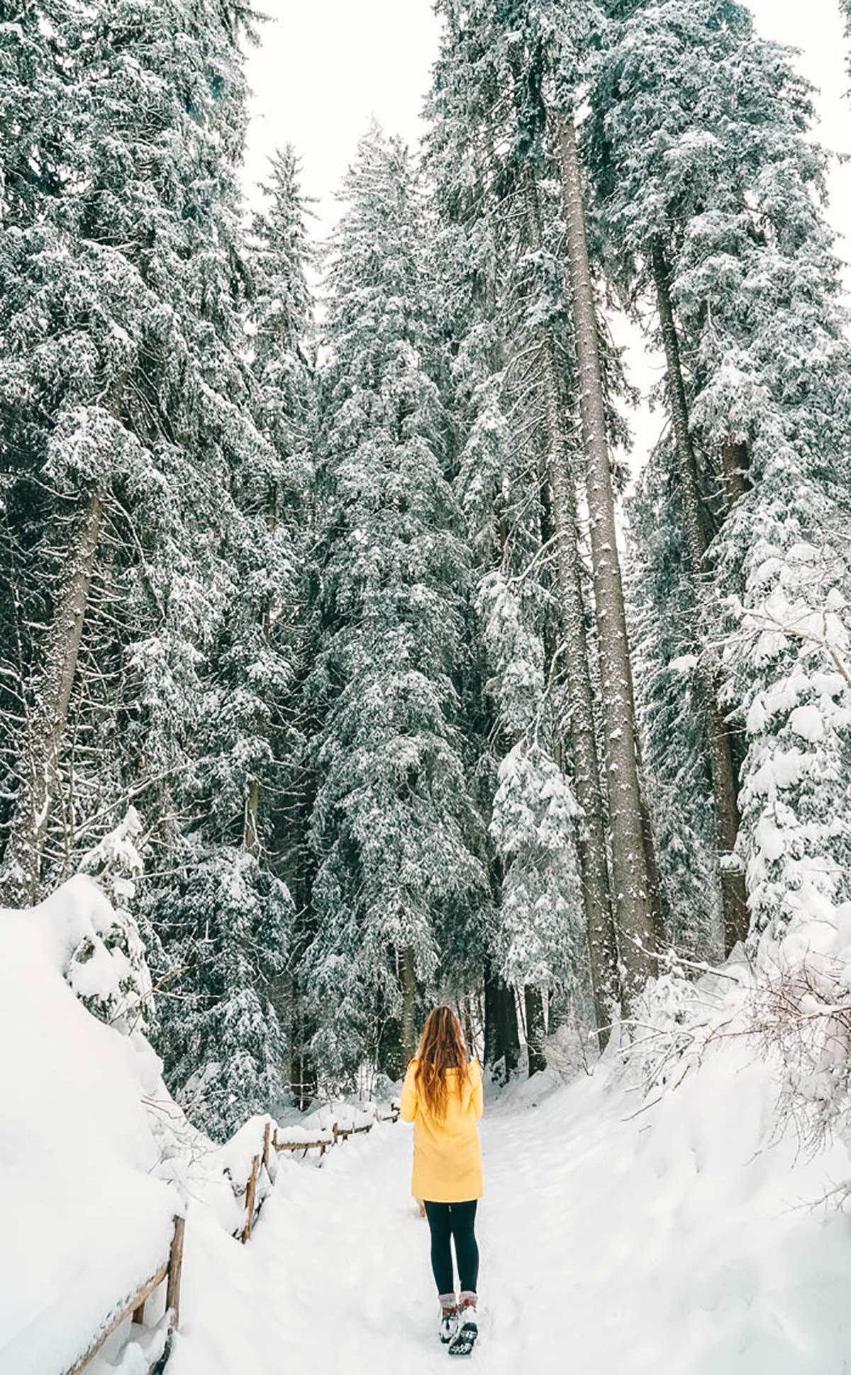 Winterlandschaft Karersee