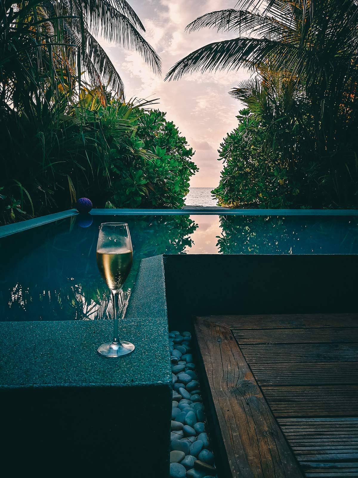 Champagner Niyama