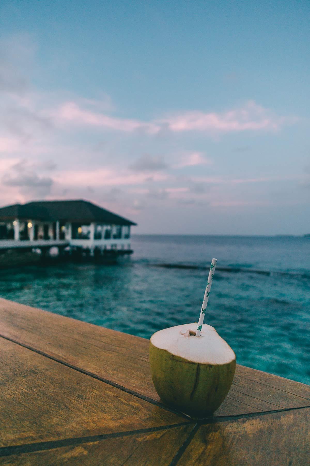 Kokousnuss Malediven