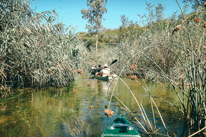 Flusssafari in Südafrika