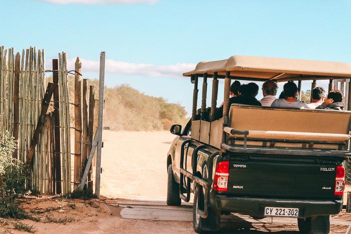 Auto im im Addo Elephant Park