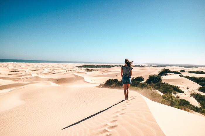 Ausblick über die Dünen von Südafrika