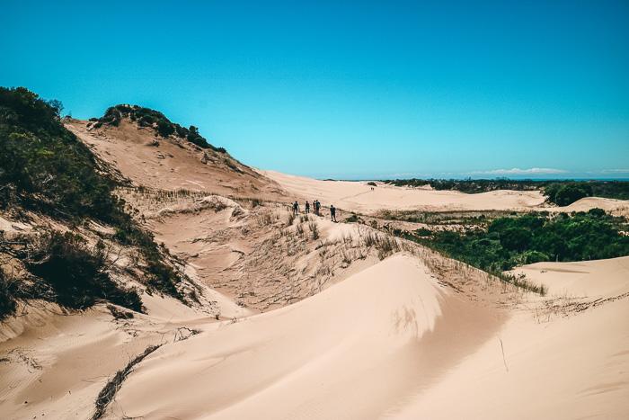Wandern in der Wüste Südafrikas