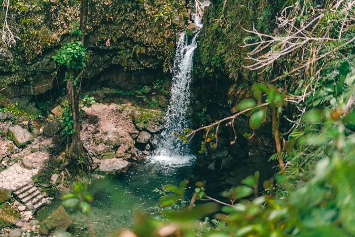 Dominica Emerald Pool