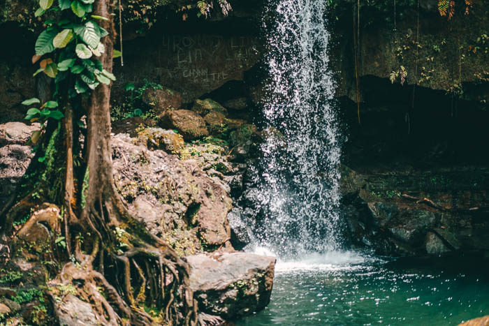 Dominica Wasserfall Emerald Pool