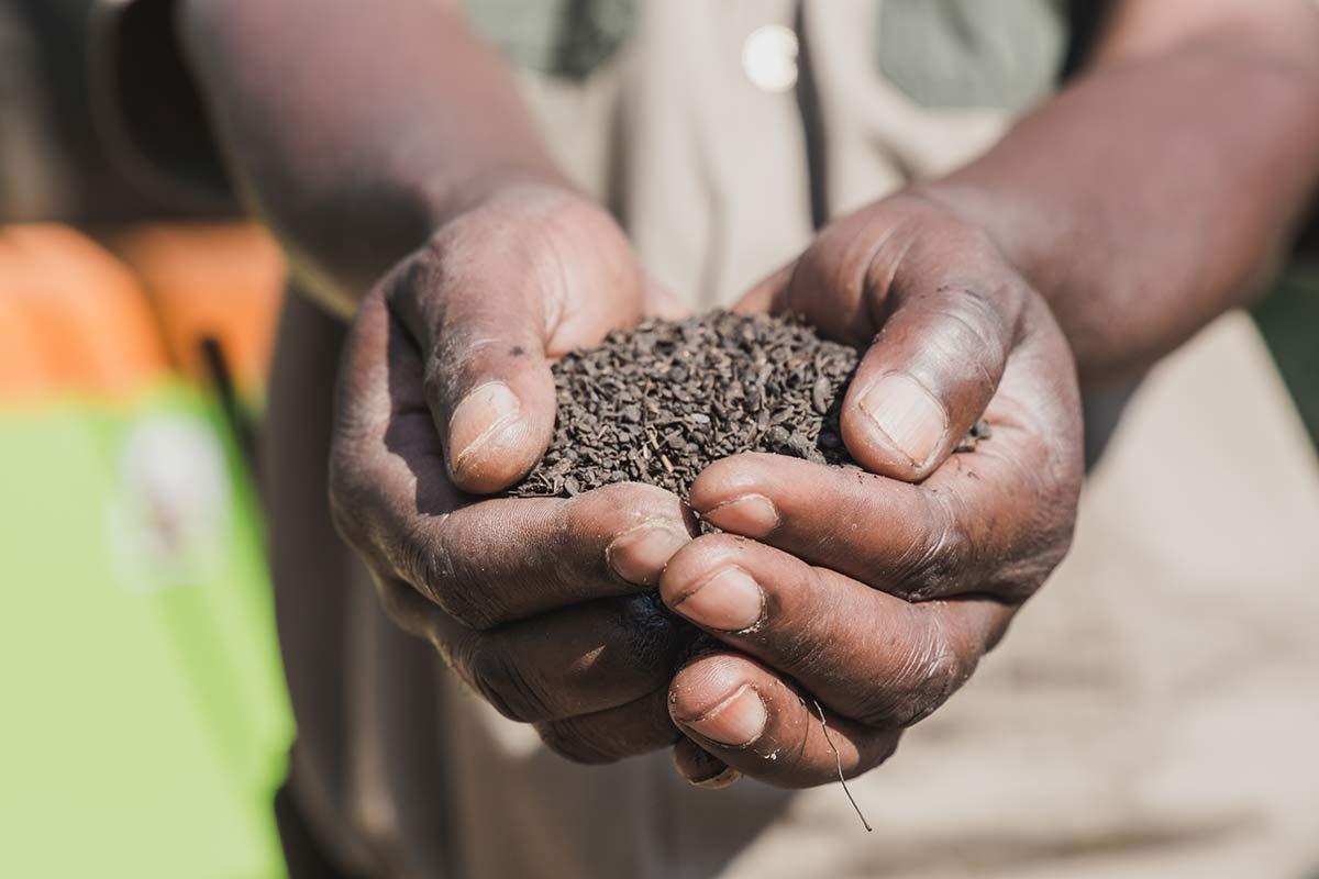 Kompostieranlage Livingston