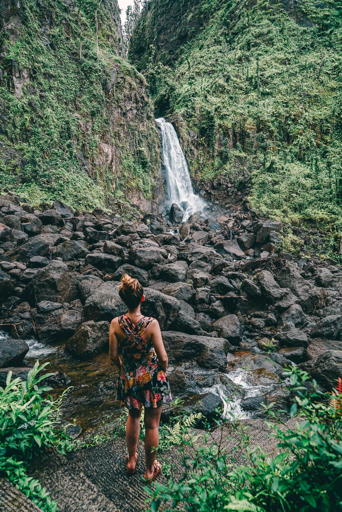 Trafalgar Falls Dominica Christine Neder