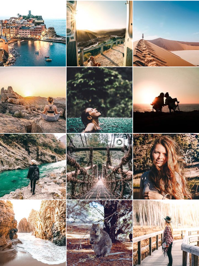Instagram Lilies Diary