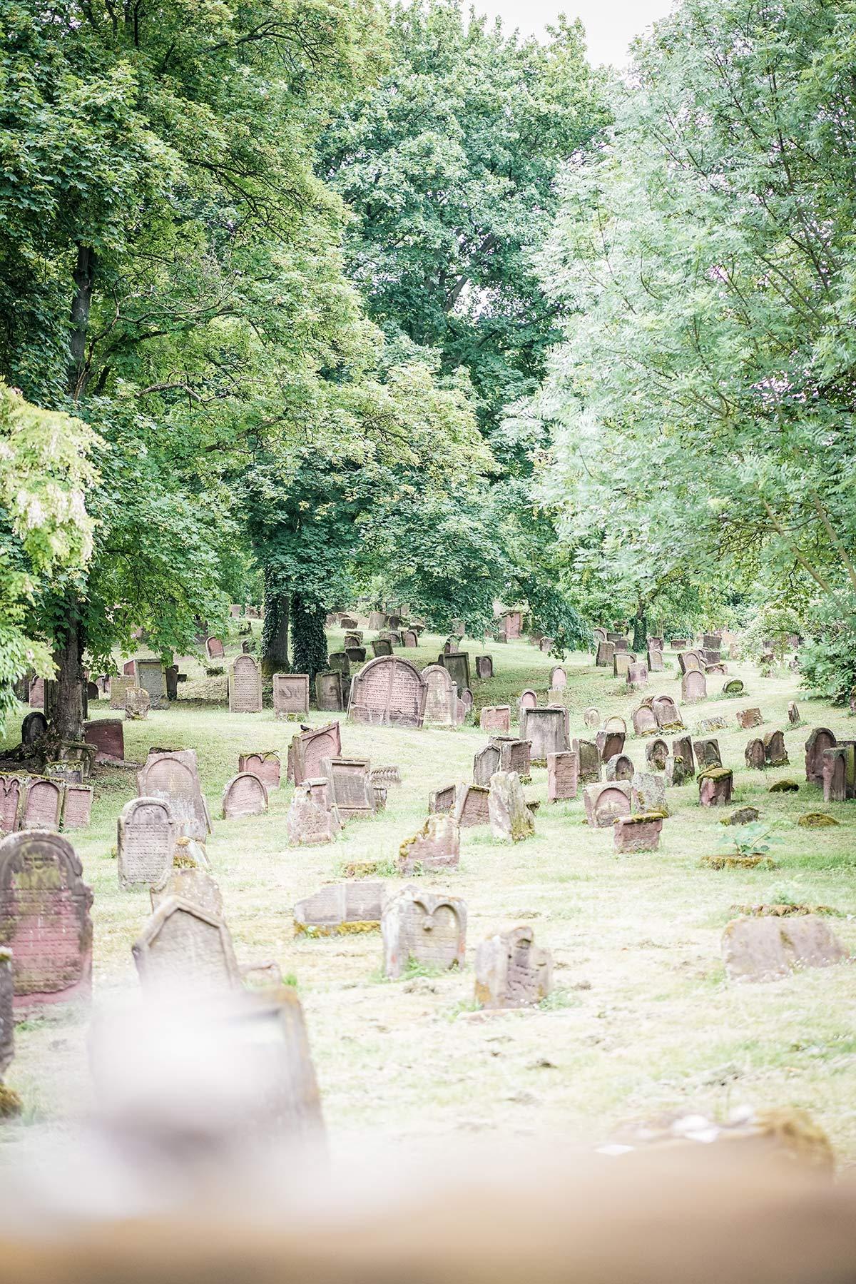 Juedischer Friedhof Worms