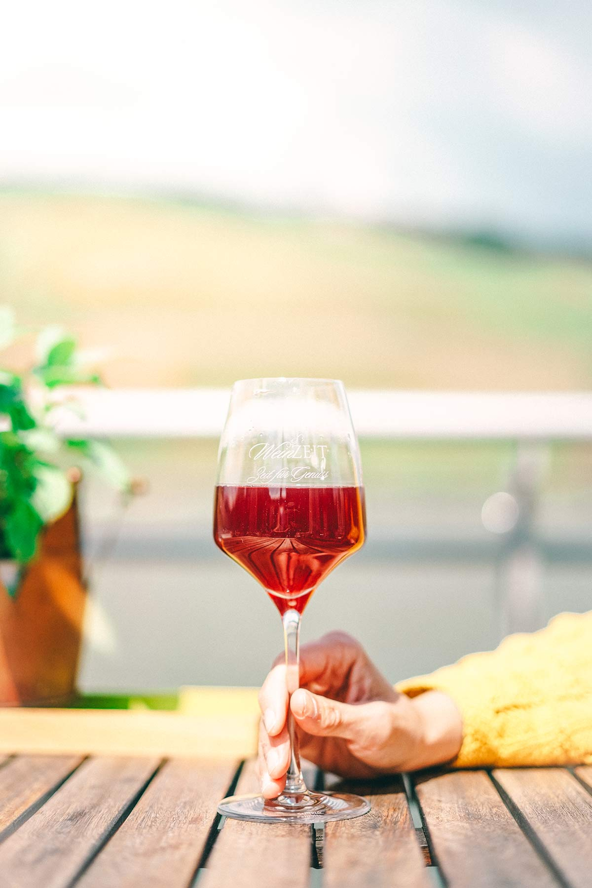 Wein trinken in Bingen
