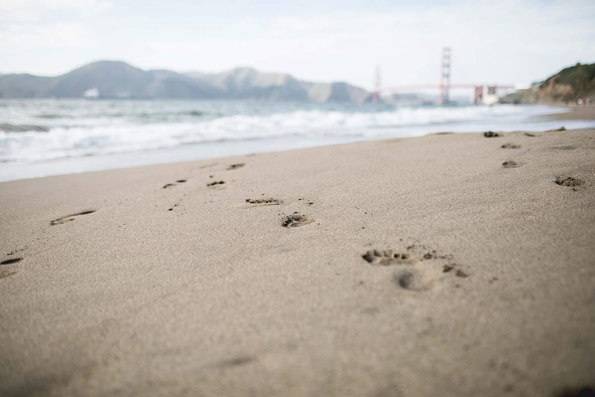 Fußabdruecke im Sand