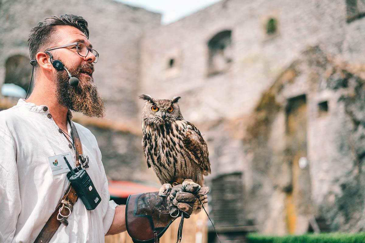 Greifvogel in der Burg