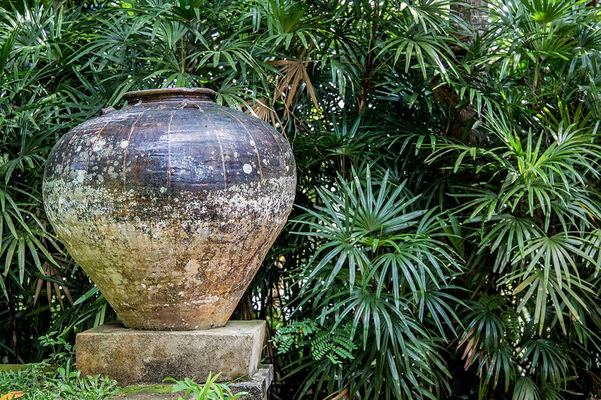 Dschungelfeeling Lunuganga