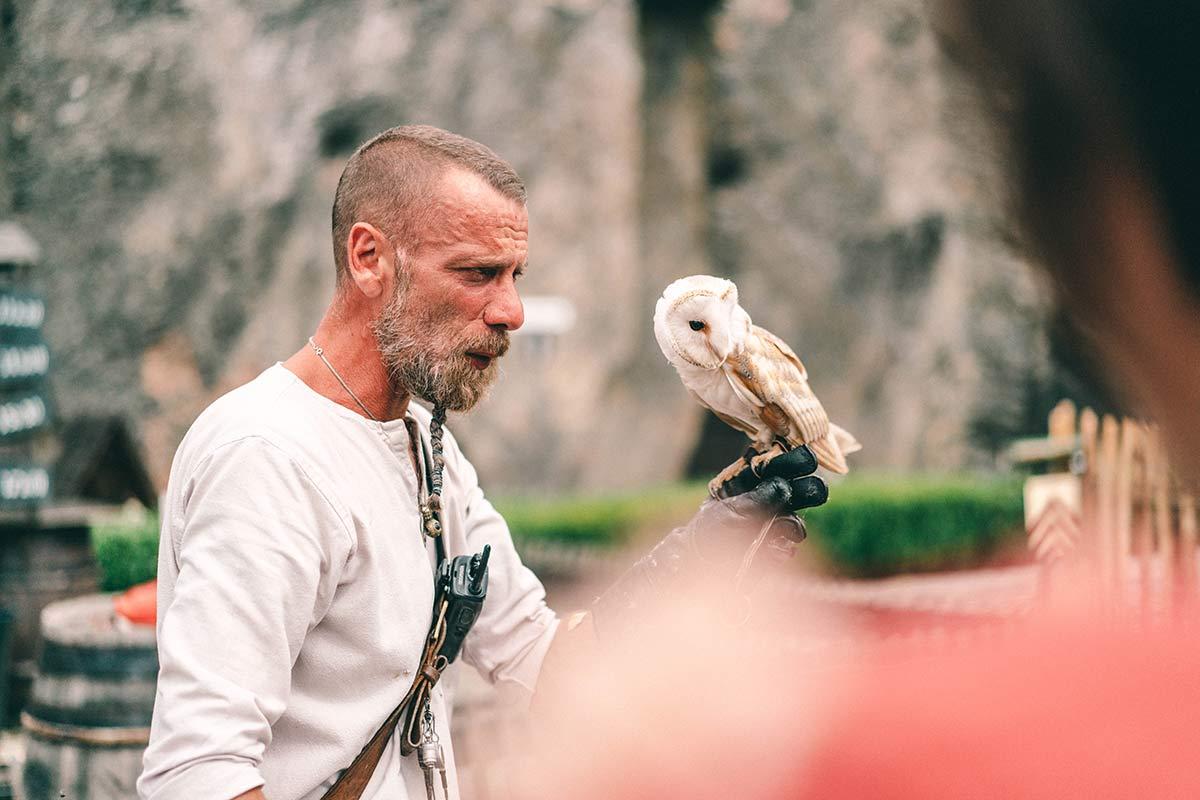 Greifvogelshow in der Burg