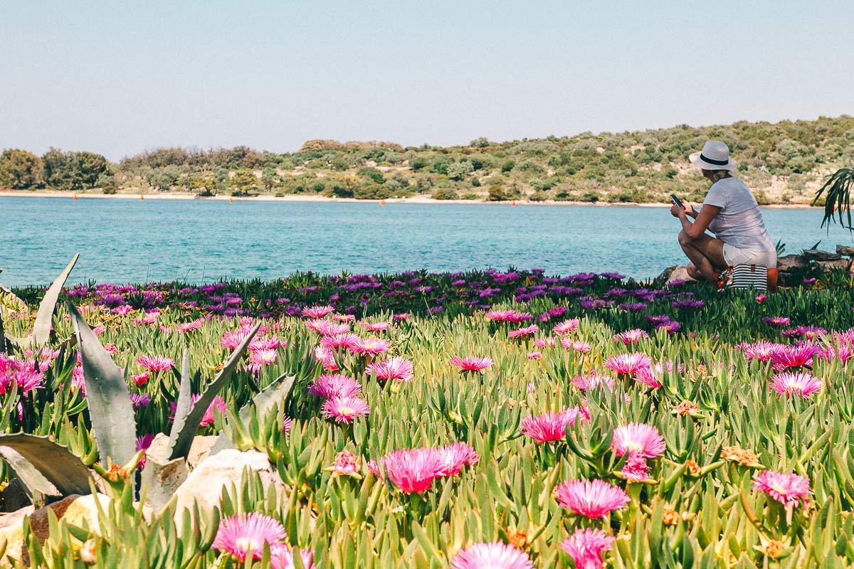 Kroatien Insel
