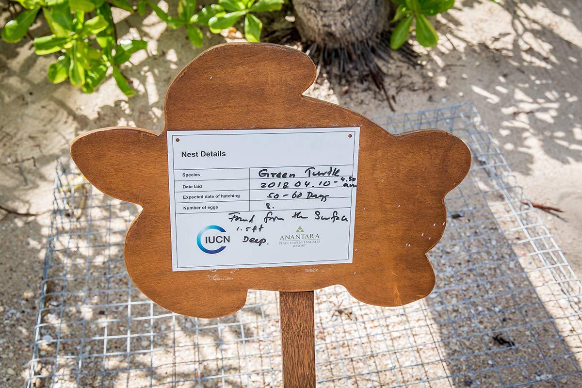 Schildkroetennest am Strand im Anantara Peace Haven Tangalle Resort