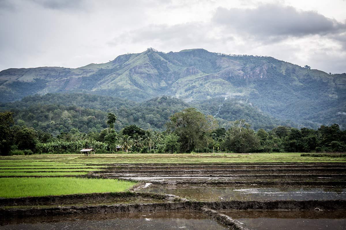 Sri Lanka Reisetipps Inland