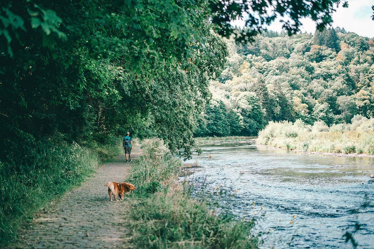 Wanderung rund um Bouillon