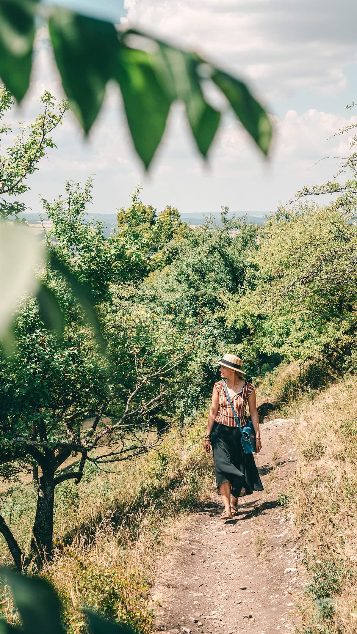 Wanderung zum Staffelberg